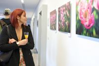 ahl_vernissage_2019_13
