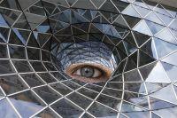 Trapp - Auge